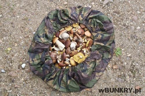 forst scheuno w bunkry - grzyby w pokrowcu na plecak
